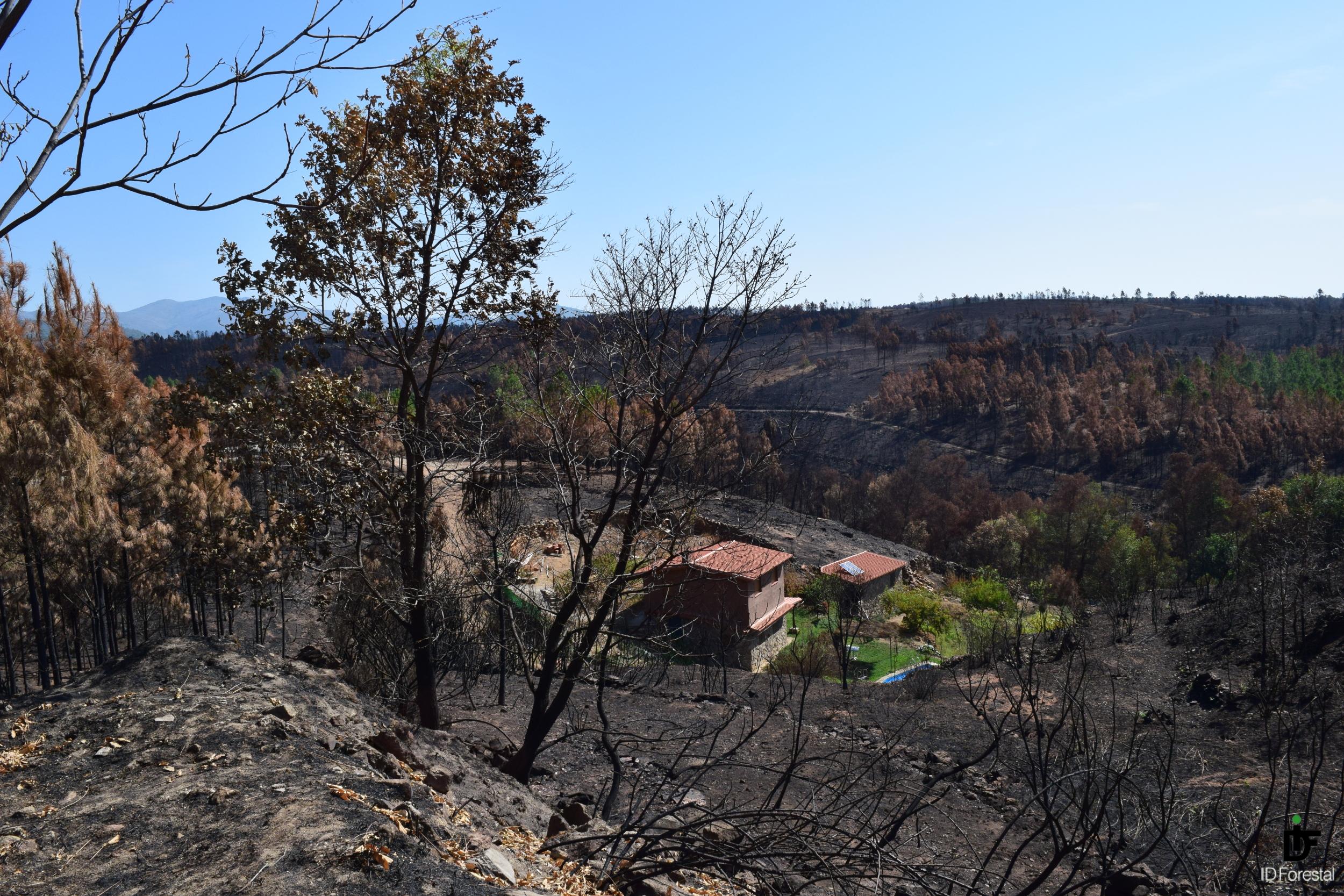 IDForestal Incendio de Sierra de Gata 2015