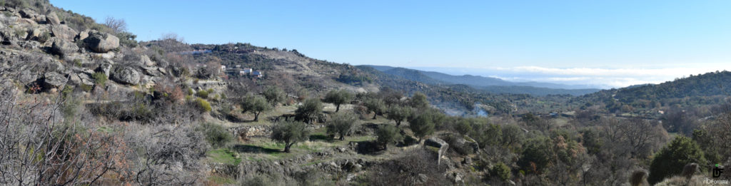 IDForestal Sierra de San Vicente (Toledo)